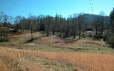 Listing Image #2 - Land for sale at TR 4 Us 76 East, Hiawassee GA 30546