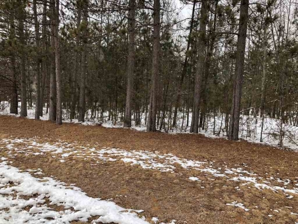 Listing Image #1 - Farm for sale at .88 Acre Winchester Rd, Mosinee WI 54455