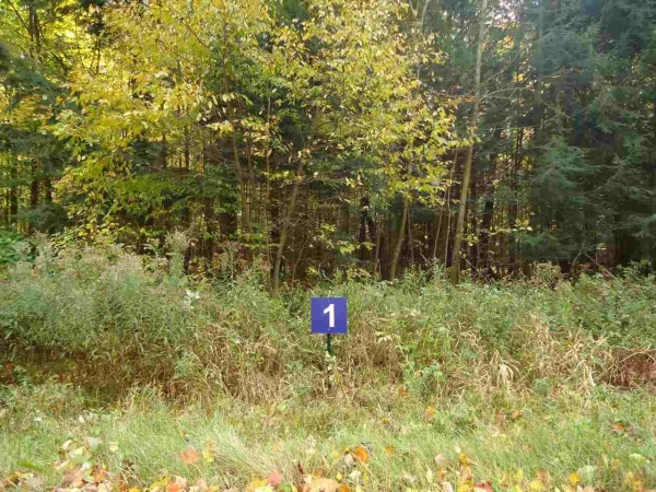 Listing Image #1 - Farm for sale at Lot 1 N 28th Ave, Merrill WI 54452