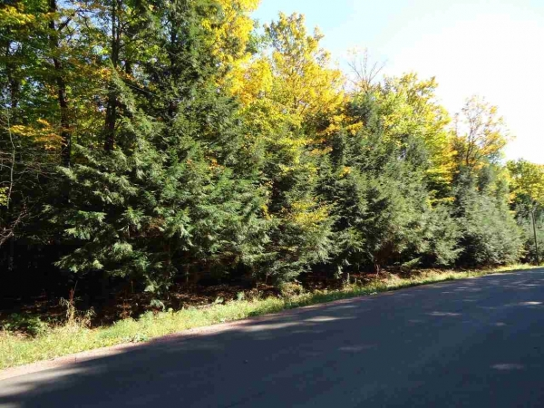 Listing Image #2 - Farm for sale at Lot 1 N 28th Ave, Merrill WI 54452