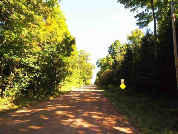 Listing Image #3 - Farm for sale at Lot 1 N 28th Ave, Merrill WI 54452